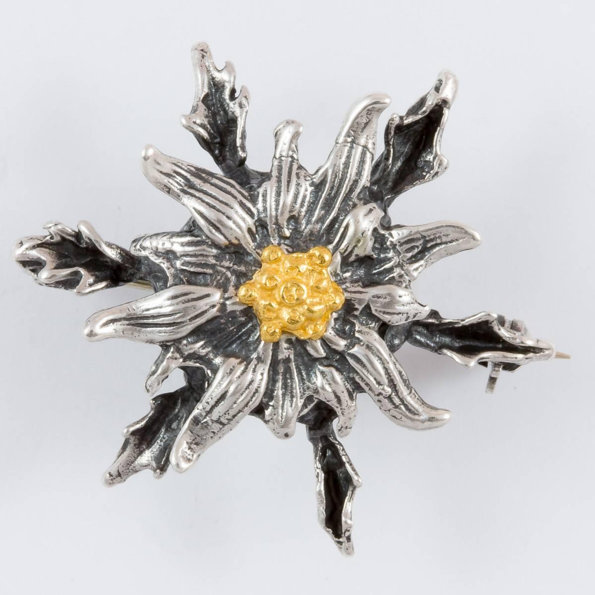 Trophäenfassung Fuchshaken-Silberdistel
